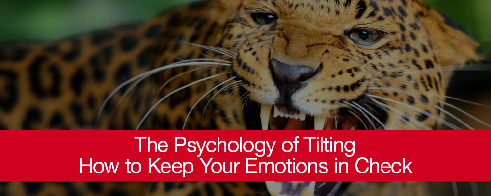 The Psychology of Tilting- How to Keep Your Emotions in Check